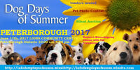 Dawg Days of Summer 2017 Peterborough