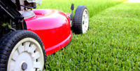 Lawn Care; Lawn Mowing