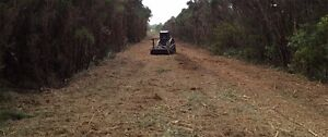 Land Clearing and Vegetation Management Torquay Fraser Coast Preview