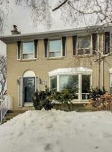 A Sunny 4 Bed, 3 Bath House Situated In A Quiet Neighborhood.