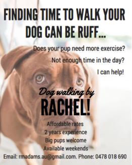 Pup Walking by Rachel!