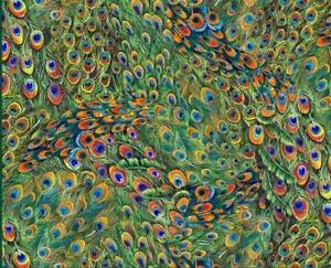 Peacock Fabric Ebay