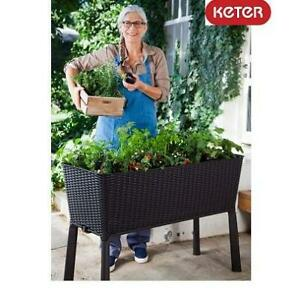 NEW KETER ELEVATED RESIN PLANTER 17194592 245205212 EASY GROW PATIO GARDEN FLOWER PLANT BROWN
