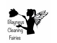 We are Blayneys Cleaning Fairies and we provide a high standard of cleaning and ironing services.