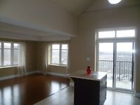 Reflections Lofts 2 Br's Corner Condo Apartment Penthouse 4 Rent