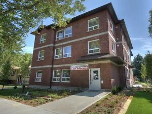 Gorgeous Newly Renovated AFFORDABLE Townhouse! 74 Churchill Kitchener / Waterloo Kitchener Area image 3
