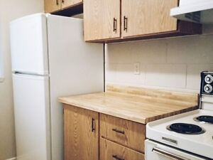 SHORT TERM RENTALS AVAILABLE @ 151 King! Kitchener / Waterloo Kitchener Area image 6