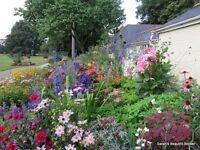 Garden Services Street, Glastonbury, Wells, Somerton, Somerset | Restoration, Development