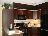 Luxurious 2 Bedroom Fully Furnished Suite Near Laurier!