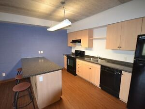 BEAUTIFUL RENTALS AT 321 LESTER FOR SEPTEMBER Kitchener / Waterloo Kitchener Area image 5