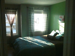 ROOM FOR RENT•600$•NOV1st