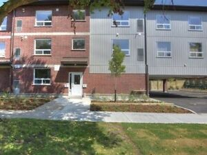 Move-in Now! Price Negotiable: All-Inclusive Summer Sublet!!