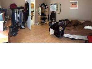 Rent a whole house with your friends for September! Kitchener / Waterloo Kitchener Area image 3