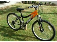 Boys Raleigh Mountain Bike 24-inch Wheel, 13 Inch Frame