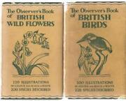 Observers Book of Birds
