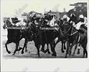 Horse Racing Collectibles