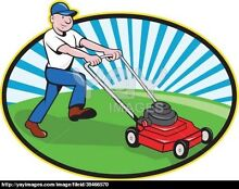 Lawn mower painter  Cartwright Liverpool Area Preview