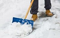 Snow Removal Service from $20 City Wide! 780 246 5111