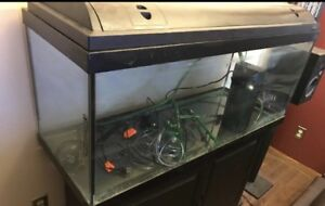 90 Gallon Fish Tank, Stand an Filter