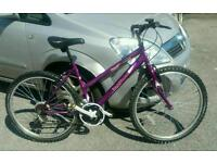 Ladies lightweight bike