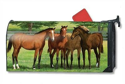 Magnetic Mailwraps Grazing Time Horses Mail Wrap  01468