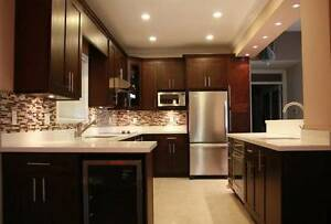 Brand new cabinets for kitchen solid wood with soft closing
