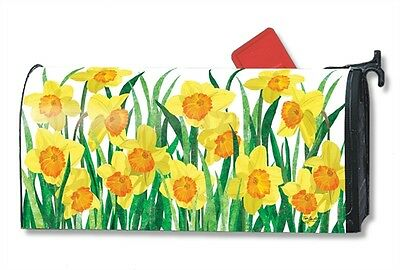 Magnetic Mailwraps Daffodils In Bloom Mail Wrap  01482