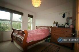 3 bedroom house in Cotesheath Street, Stoke-On-Trent, ST1 (3 bed) (#969429)