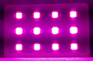 Hydroponic LED COB Grow Lights - 500watt - 400w - 300w - 200w