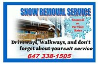 HOME SNOW CLEARING, GREAT PRICES, PERSONALIZED SERVICE