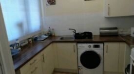 New flat, one large room for rent