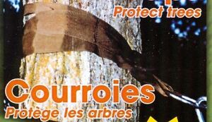 Courroies camping