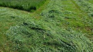HAY FOR SALE $220 PER TON DELIVERED PRICE