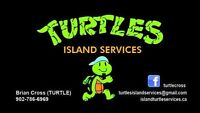 Turtles services