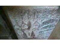 Shagpile Carpet