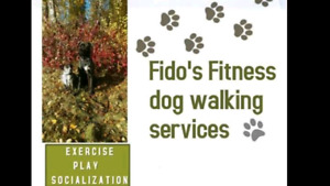 Fido's fitness dog walking services