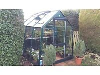 Complete Greenhouse 6x6 with extras