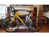 Carrera cycle bike