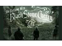 An Evening With Black Stone Cherry