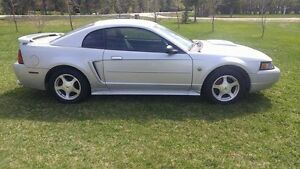 SAFETIED 2004 Ford Mustang 40th ANNIVERSAY EDITION