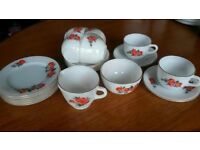 20 piece june rose pyrex set