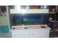 4ft fish tank and stand,lights,pump.No cracks but will need a clean out due to being stored