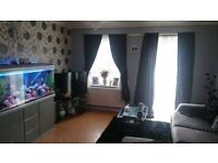 2 bed end terrace house ramsgate