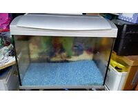 2ft fish tank with light and stones