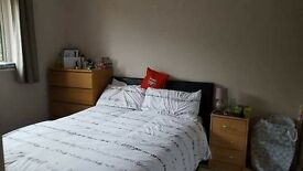 Double room to rent in Bradley Stoke