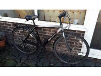 Appolo Belmont bike / bicycle