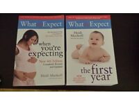 Pregnancy and baby's first year books