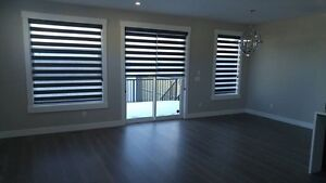 Blinds & Shades