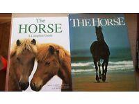 horse books various