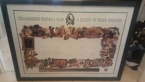 Collingwood football club signed - history of proud tradition Redlynch Cairns City Preview